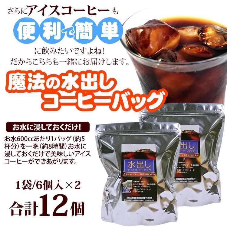 魔法の水出しコーヒーバッグ2袋(12個)